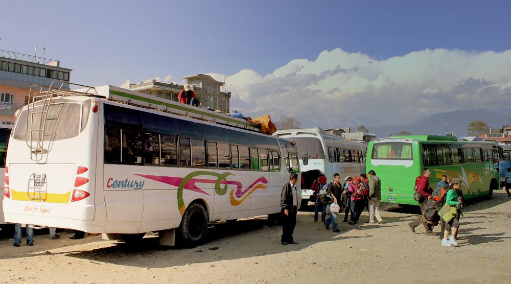 long root bus