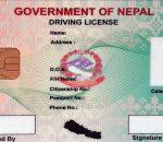 license photo